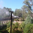 Recorrido en tren de vapor Puffing Billy y por la reserva de Healesville con salida desde Melbourne, Melbourne, AUSTRALIA