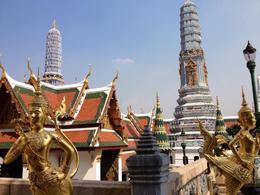 Wat Phra Kaew, Cat - February 2013