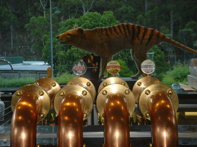 Cascade Brewery - Tasmanian Tiger - Hobart