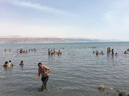 Floating in the Dead Sea was effortless!! , vinh_hoang - May 2016