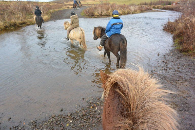 Viking Horse Riding and Golden Circle Tour from Reykjavik photo 17