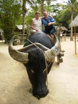 It was an amazing experience for Gordon and Anne to ride a water buffalo. - April 2008