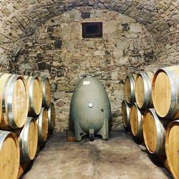 Winery cellar/storage. , Alicia S - February 2018