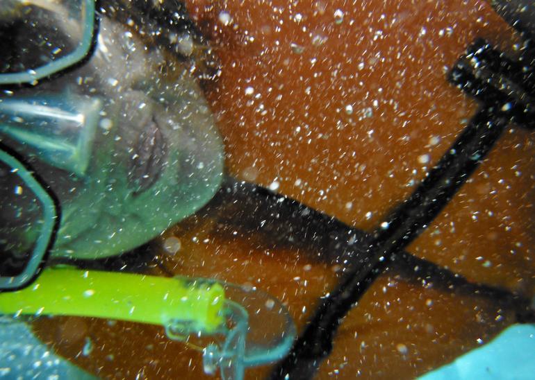 Snorkeling!!! -