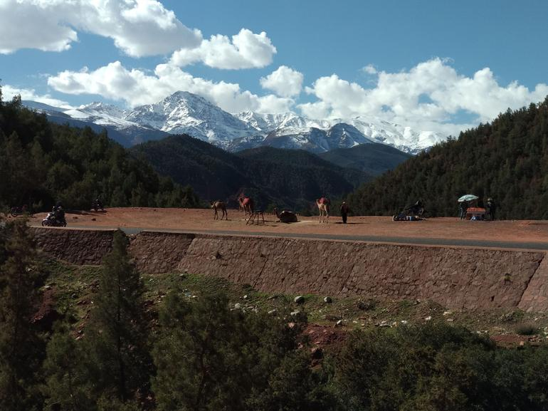 Ourika Valley Day Trip from Marrakech photo 11