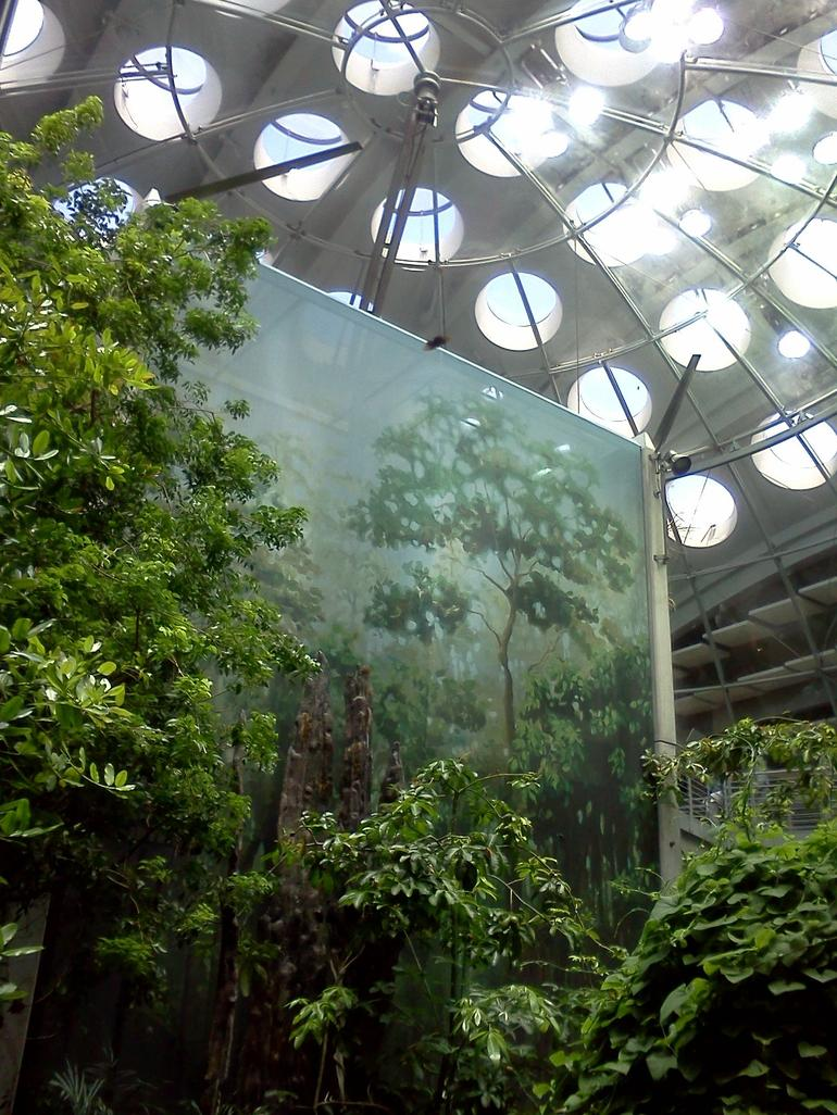 4-story rainforest - San Francisco