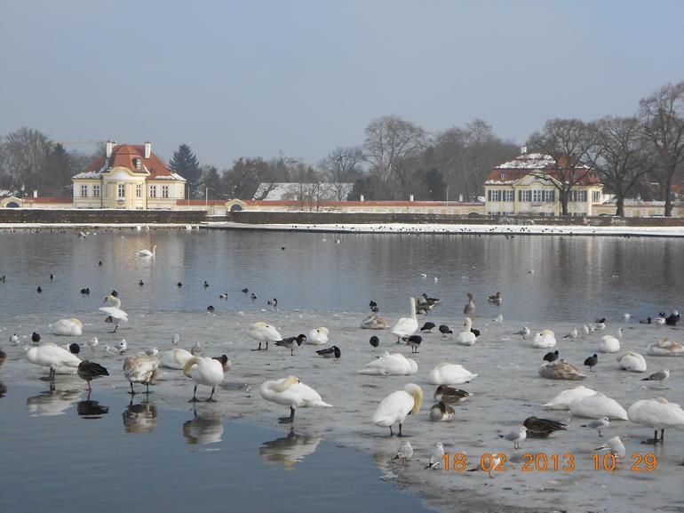 At Nyphemberg palace - Munich