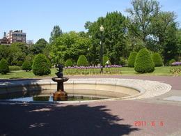 - June 2011
