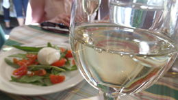 Caprese salad and wine , Coral M - May 2016