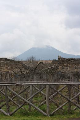 This is an awsome shot of a reconstructed pompeii vineyard with the volcanoe in the background - March 2010