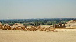 Utsikt fra tempelet. Man ser hvor grønt og frodig det er i Luxor. , Elisabeth J - July 2015