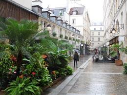 Walking in Paris , Marcelle G - October 2014