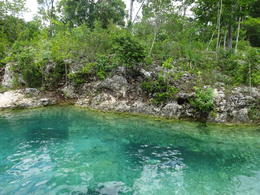 Cenote swim , Ben Holmes - October 2016