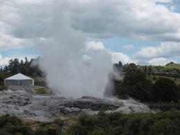 Geyser at Rotorua , Douglas M - January 2017