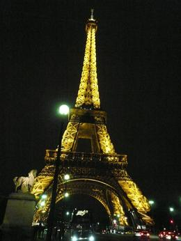 One of the most beautiful sites in the Paris by night tour of Viator., Zahid N - October 2009
