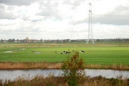 Paisajes bellisimos y saber como Holanda fue ganando tierra al mar, la importancia de la ganadería en ello , Adriana Beatriz M - November 2013