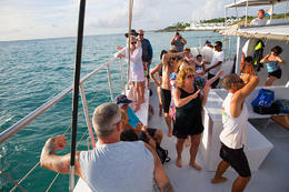 Anguilla Day Trip from St Maarten Including Lunch, Viator Insider - January 2018
