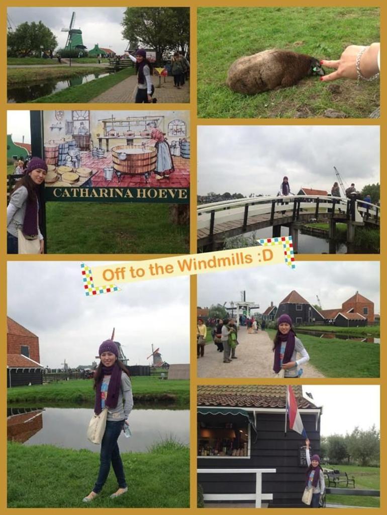 Windmills :D - Amsterdam