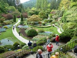 Sunken garden , Francis M - May 2015