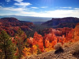 Our view of Bryce Caynon - January 2015
