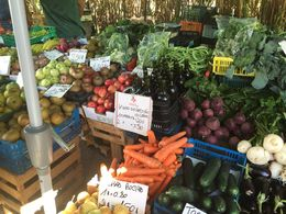 Roadside Farm Market , hollywiesman - October 2015