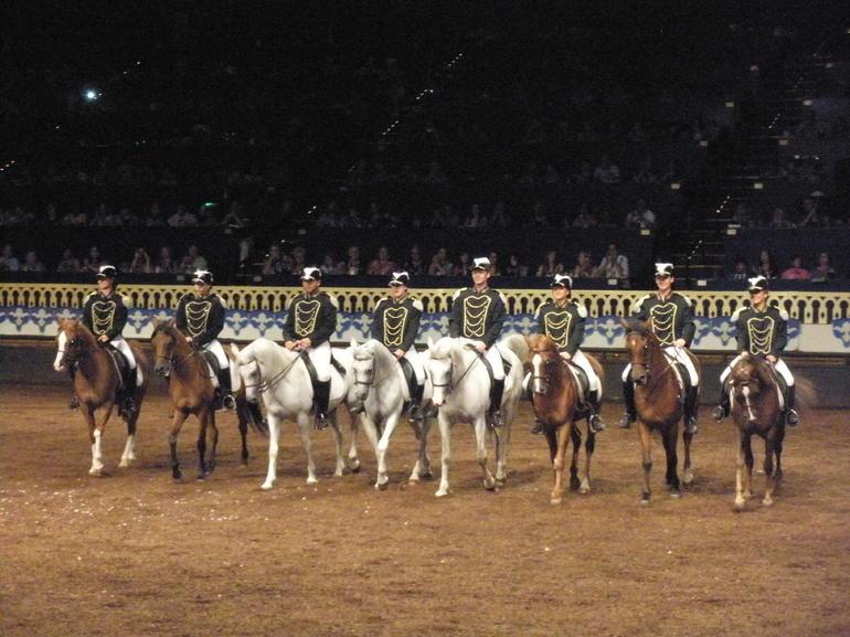 Horse Line Up - Orlando