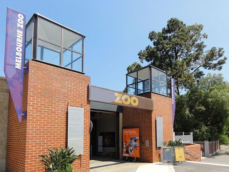 Melbourne Zoo - Melbourne