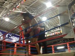 Muay Thai boxing match, Cat - February 2013