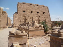 the entrance of the temple is lined with rams on either side. supposedly this ram road connected Karnak temple to Luxor temple 3 km away. , Fatma A - March 2014