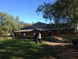 Oakvale winery, Cat - December 2013