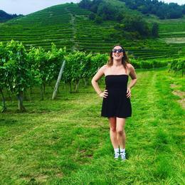 Gorgeous vineyards , Jade - September 2016
