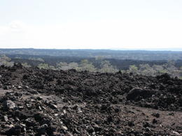Miles and miles of old lava fields, along the coast at the southern tip of the big island , Paul K - December 2014