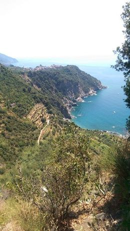 I crawled up off of the path to get this shot, I'd say it was worth it! This is looking back towards Corniglia on the way to Vernazza. , DaniV - July 2015