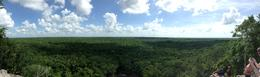 Panorama from the top of Coba. , Ben Holmes - October 2016
