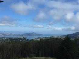 Looking out at San Francisco Bay , Bina F - February 2017