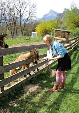 It was so much fun feeding the goats at the Heidi house! , Chelsea M - April 2014