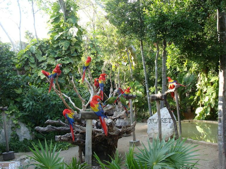 Xcaret - Cancun