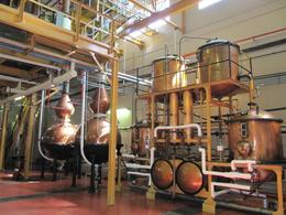 Old copper stills at Van Ryn - February 2010