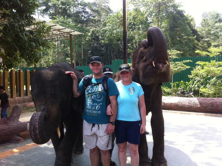 Elephant Orphanage Sanctuary - Kuala Lumpur