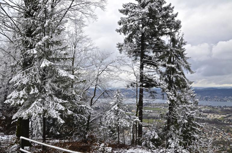 Snow - Zurich