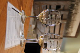 Glasses of Wine at Larson Family Winery in Sonoma , John M - October 2015