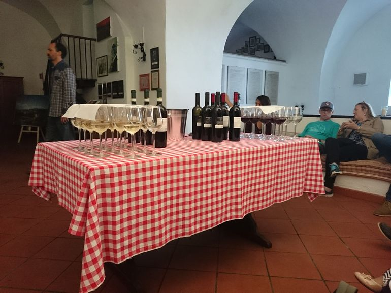 Frascati Wine Tasting Guided Tour from Rome photo 18
