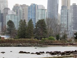 Island where Spanish landed with City in back - taken from Stanley Park , theresewilson872 - November 2016