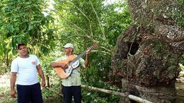 The plantation owner on the right played guitar and sang with our guide on the left. A very special moment. , Allan - September 2015