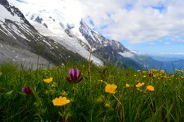 This is the stop halfway up Mont Blanc. Take the time to walk around and see the view. , M Esther S - June 2015