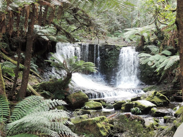 Mt Field National Park and Russell Falls from Hobart photo 8