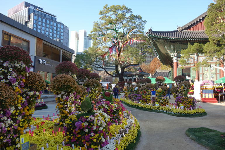 Full Day Small-Group Royal Palace and Seoul Tour photo 7