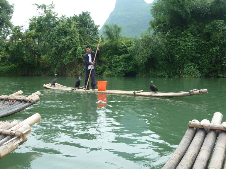 Bamboo raft and bird show - Guilin