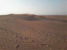 Desert Safari in Dubai , AM - March 2014