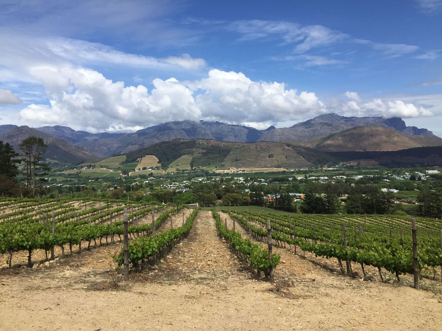 MORE PHOTOS, Full-day Winelands Explore Private Tour of Stellenbosch, Franschhoek and Paarl